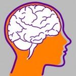 Brain196